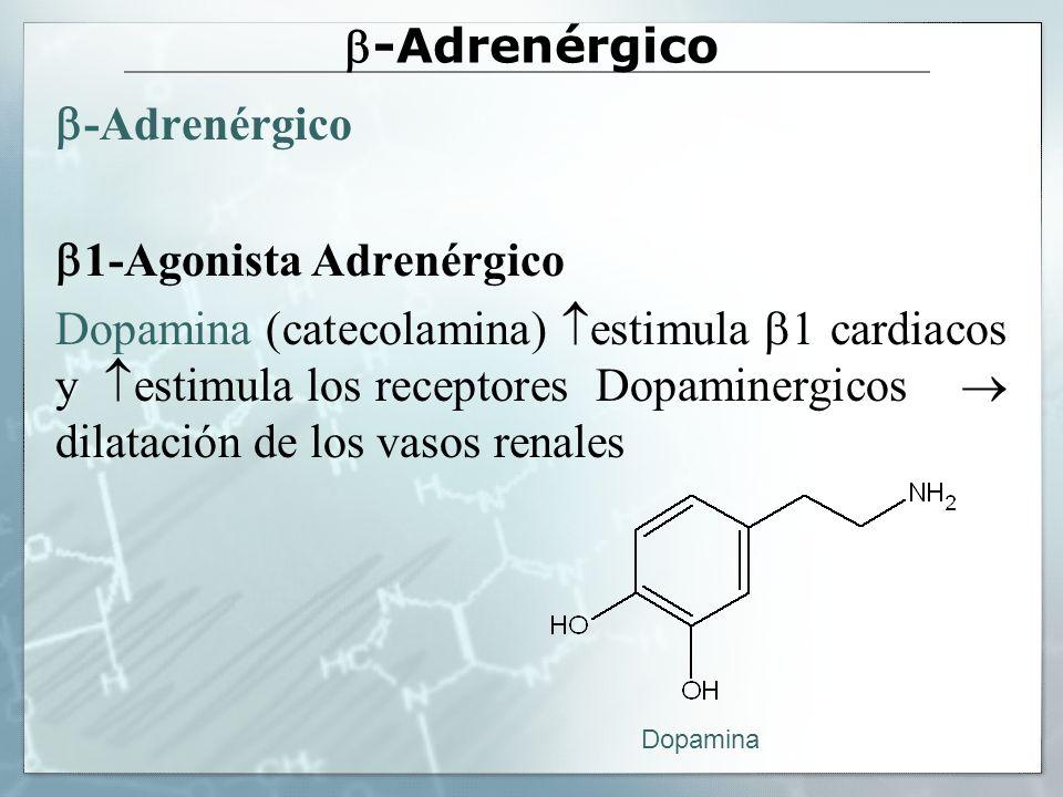 -Adrenérgico 1-Agonista Adrenérgico Dopamina (catecolamina) estimula 1 cardiacos y estimula los receptores Dopaminergicos dilatación de los vasos rena
