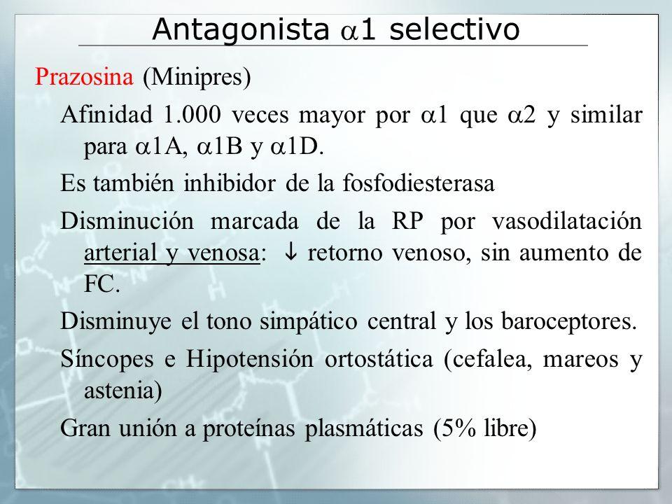 Antagonista 1 selectivo Prazosina (Minipres) Afinidad 1.000 veces mayor por 1 que 2 y similar para 1A, 1B y 1D. Es también inhibidor de la fosfodieste