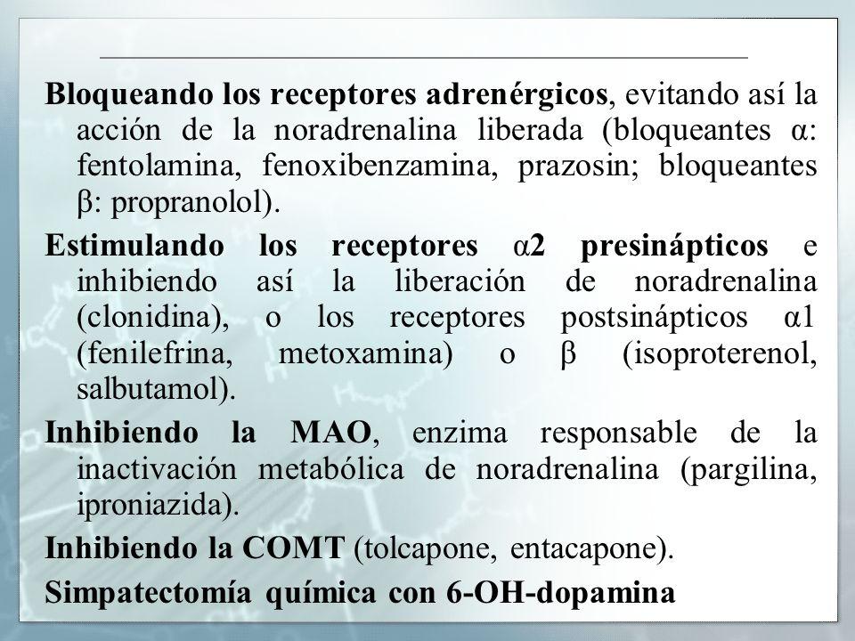 Bloqueando los receptores adrenérgicos, evitando así la acción de la noradrenalina liberada (bloqueantes α: fentolamina, fenoxibenzamina, prazosin; bl