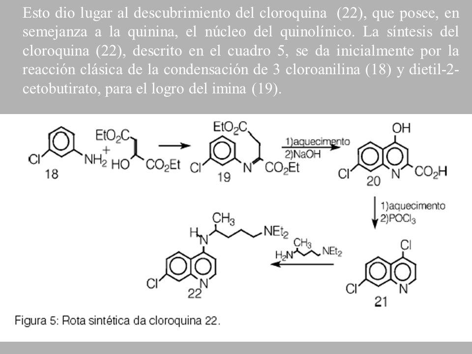 Esto dio lugar al descubrimiento del cloroquina (22), que posee, en semejanza a la quinina, el núcleo del quinolínico. La síntesis del cloroquina (22)