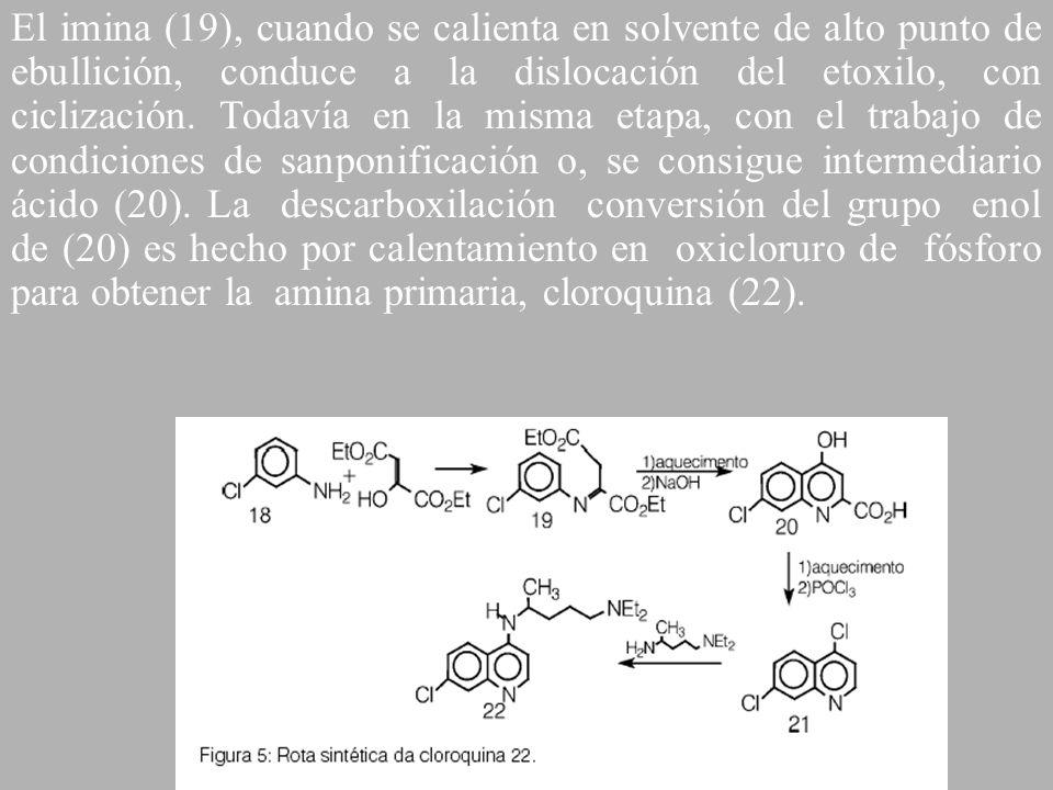 El imina (19), cuando se calienta en solvente de alto punto de ebullición, conduce a la dislocación del etoxilo, con ciclización. Todavía en la misma