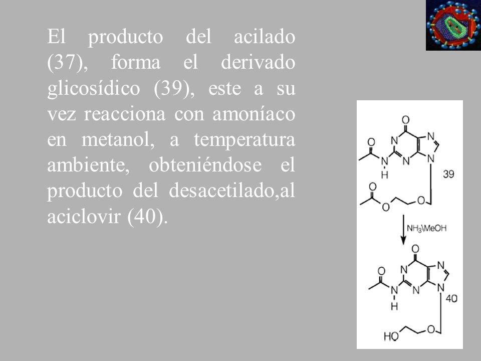 El producto del acilado (37), forma el derivado glicosídico (39), este a su vez reacciona con amoníaco en metanol, a temperatura ambiente, obteniéndos