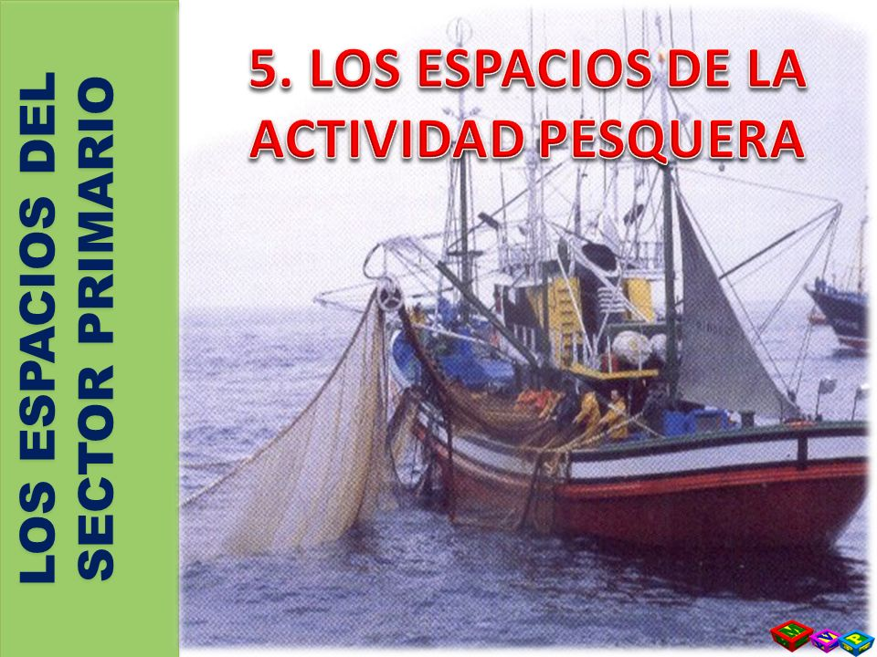 a)EXTENSIÓN Y ORGANIZACIÓN: -S-Se EXTIENDE desde la costa HASTA 200 millas que delimitan la Zona Económica Exclusiva de pesca --- ZEE -S-Se ORGANIZA en OCHO regiones: noroeste, cantábrica, tramontana, levantina, surmediterránea, suratlántica, balear y canaria b) CALADEROS : COMUNITARIOS E INTERNACIONALES -C-Caladeros Comunitarios son los pertenecientes a otros países de la Unión Europea -C-Caladeros Internacionales, entre los que destacan: el del ATLÁNTICO seguido de lejos de los del Indico y Pacífico 5.