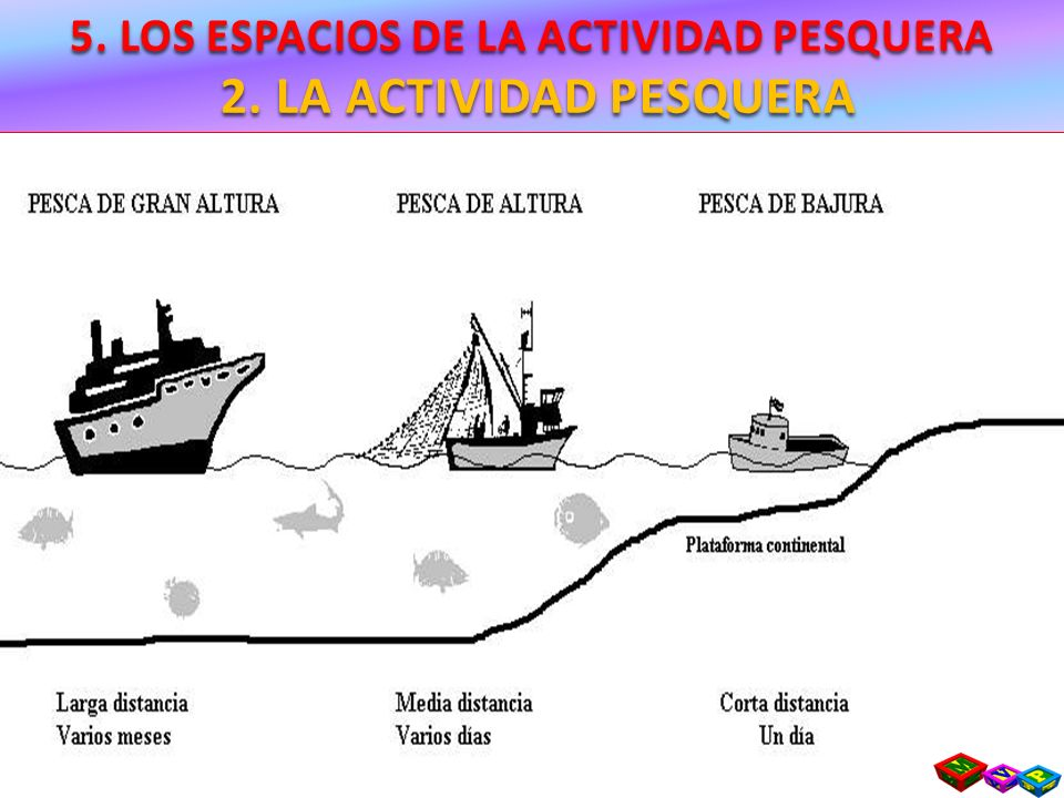 5. LOS ESPACIOS DE LA ACTIVIDAD PESQUERA 4. LOS PROBLEMAS DE LA PESCA Y LA POLÍTICA PESQUERA