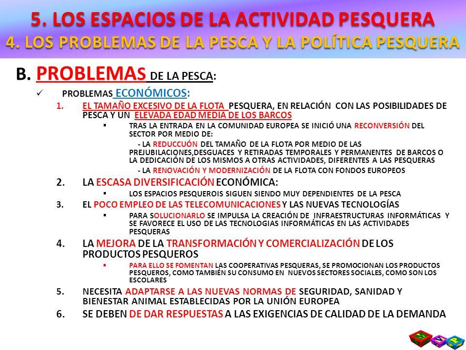B. PROBLEMA S DE LA PESCA: PROBLEMAS ECONÓMICOS: 1.EL TAMAÑO EXCESIVO DE LA FLOTA PESQUERA, EN RELACIÓN CON LAS POSIBILIDADES DE PESCA Y UN ELEVADA ED
