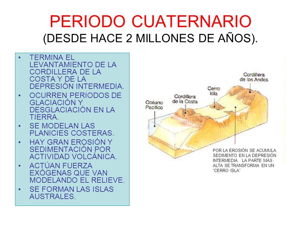 PERIODO CUATERNARIO (DESDE HACE 2 MILLONES DE AÑOS). TERMINA EL LEVANTAMIENTO DE LA CORDILLERA DE LA COSTA Y DE LA DEPRESIÓN INTERMEDIA. OCURREN PERIO