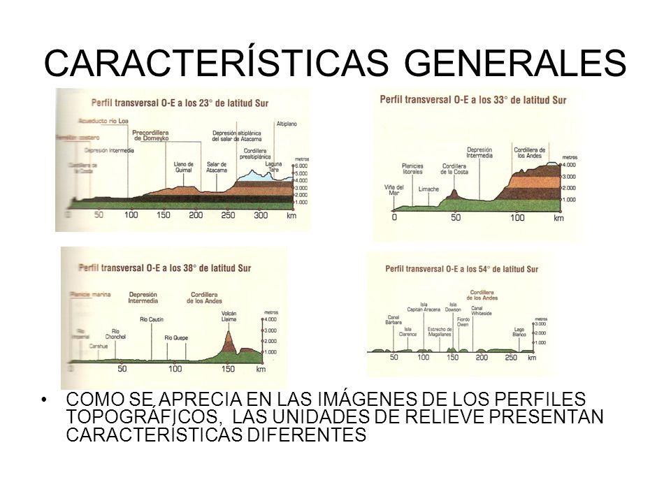 CARACTERÍSTICAS GENERALES COMO SE APRECIA EN LAS IMÁGENES DE LOS PERFILES TOPOGRÁFICOS, LAS UNIDADES DE RELIEVE PRESENTAN CARACTERÍSTICAS DIFERENTES