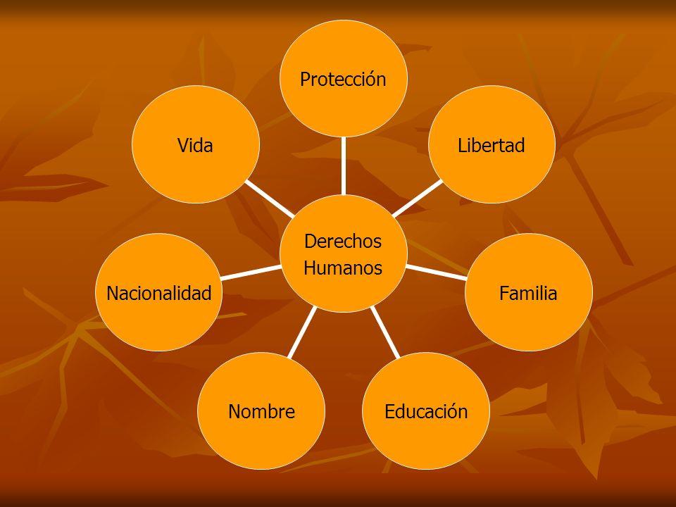 Principales Derechos: Derecho a la vida.