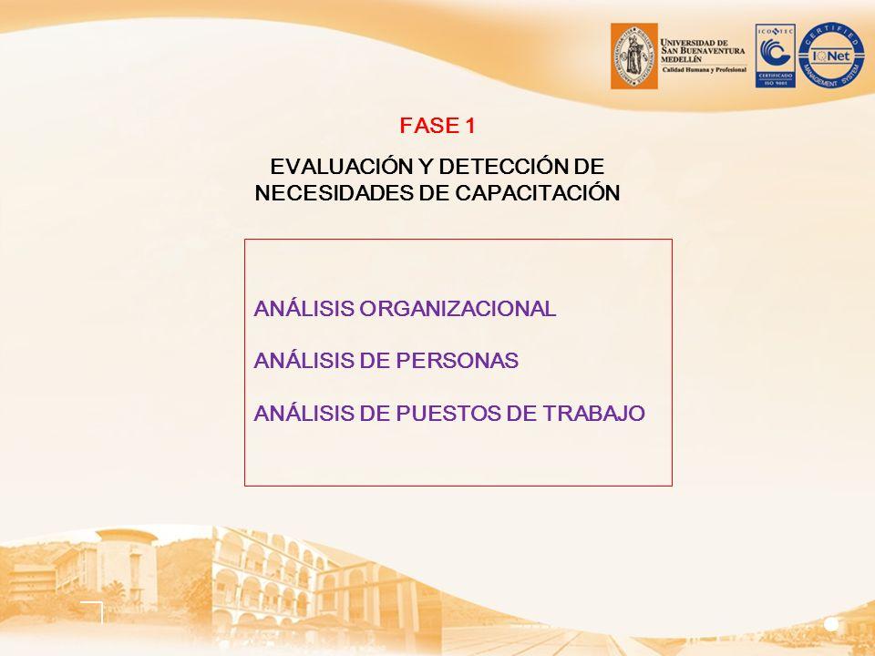 ANÁLISIS ORGANIZACIONAL ANÁLISIS DE PERSONAS ANÁLISIS DE PUESTOS DE TRABAJO FASE 1 EVALUACIÓN Y DETECCIÓN DE NECESIDADES DE CAPACITACIÓN