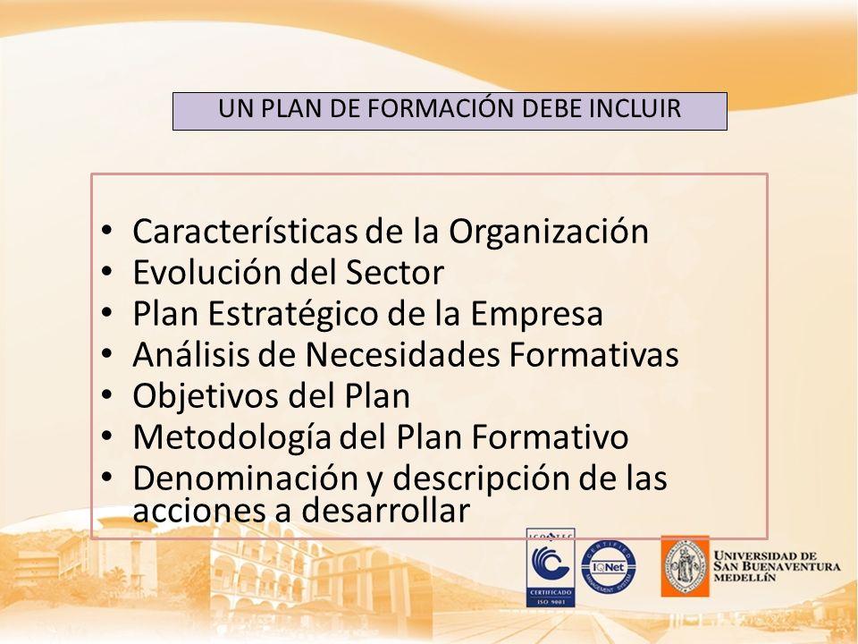 Características de la Organización Evolución del Sector Plan Estratégico de la Empresa Análisis de Necesidades Formativas Objetivos del Plan Metodolog