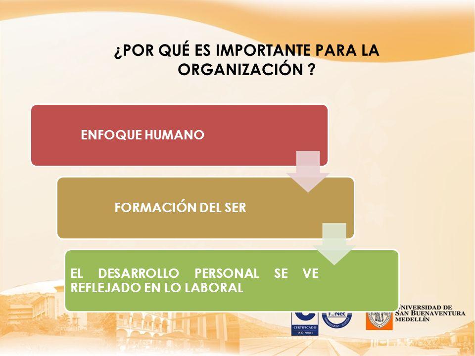 ¿Frente a cuáles proyectos o responsabilidades identificados, el grupo requiere información, conocimientos, habilidades o actitudes especiales.