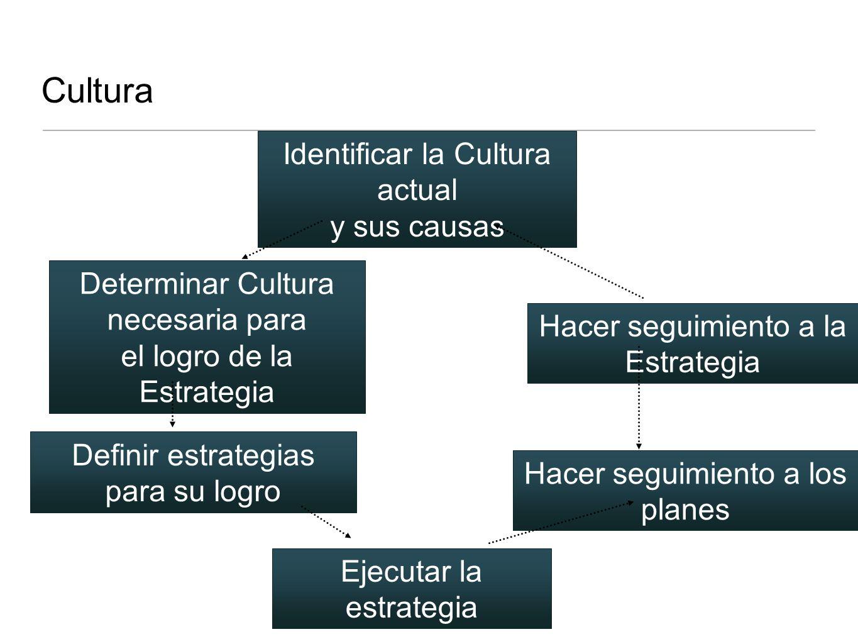 Cultura Identificar la Cultura actual y sus causas Definir estrategias para su logro Determinar Cultura necesaria para el logro de la Estrategia Ejecu