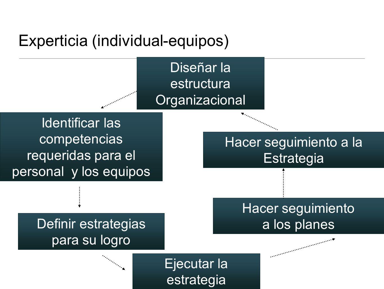Experticia (individual-equipos) Identificar las competencias requeridas para el personal y los equipos Definir estrategias para su logro Diseñar la es