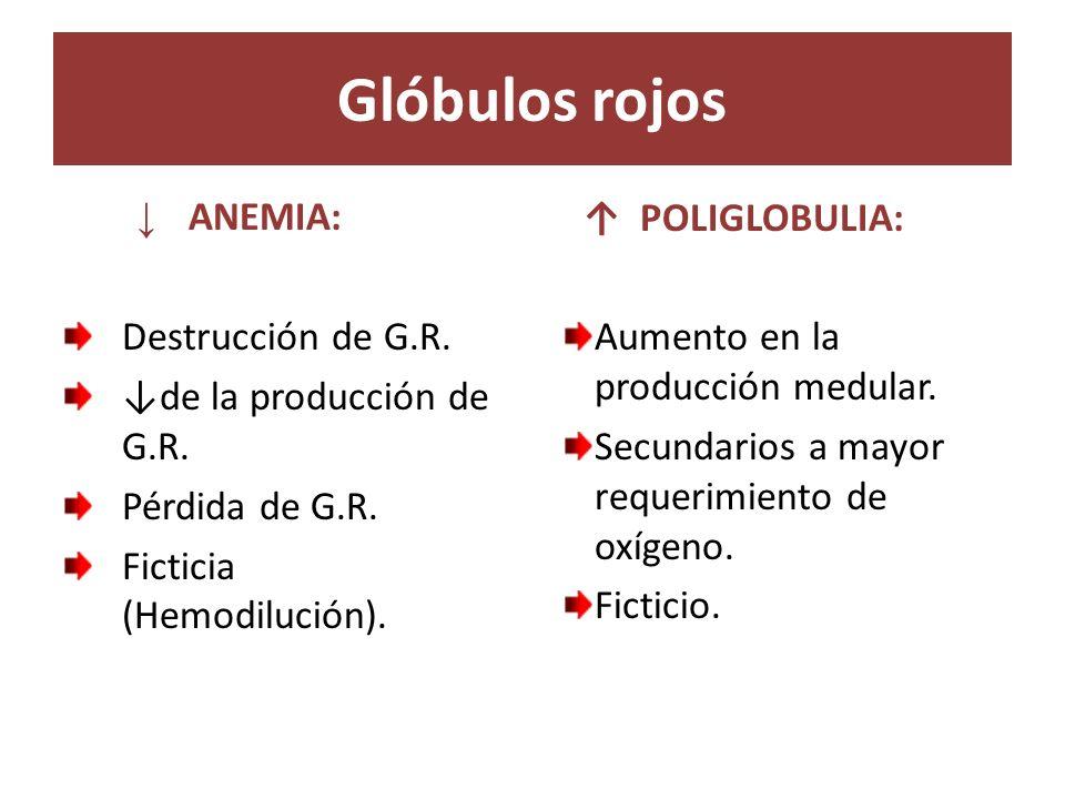 Glóbulos rojos ANEMIA: Destrucción de G.R. de la producción de G.R. Pérdida de G.R. Ficticia (Hemodilución). POLIGLOBULIA: Aumento en la producción me