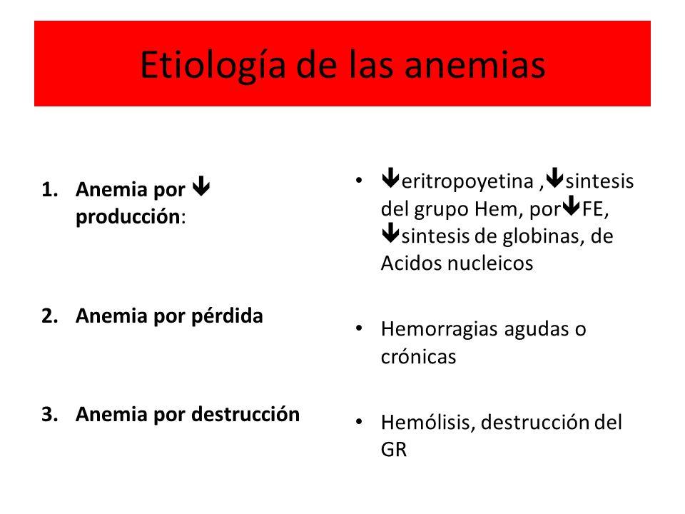 Etiología de las anemias 1. Anemia por producción: 2. Anemia por pérdida 3. Anemia por destrucción eritropoyetina, sintesis del grupo Hem, por FE, sin