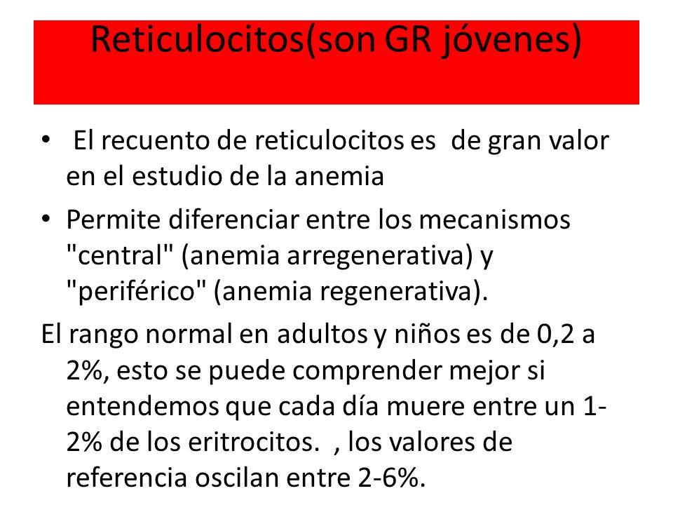 Reticulocitos(son GR jóvenes) El recuento de reticulocitos es de gran valor en el estudio de la anemia Permite diferenciar entre los mecanismos