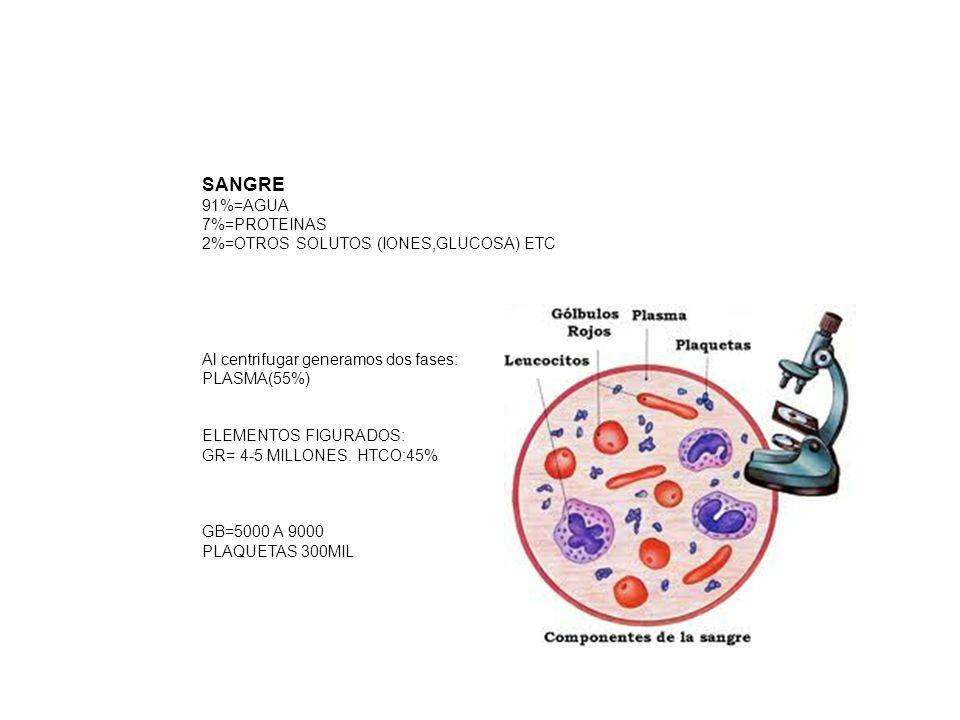 Neutrofilia.Se refiere a una concentración periférica de neutrófilos superior a 7.5 x 109/l.