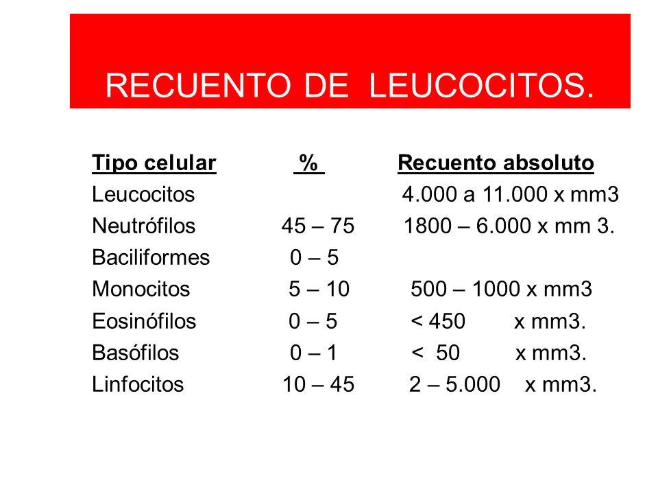 Tipo celular % Recuento absoluto Leucocitos 4.000 a 11.000 x mm3 Neutrófilos 45 – 75 1800 – 6.000 x mm 3. Baciliformes 0 – 5 Monocitos 5 – 10 500 – 10