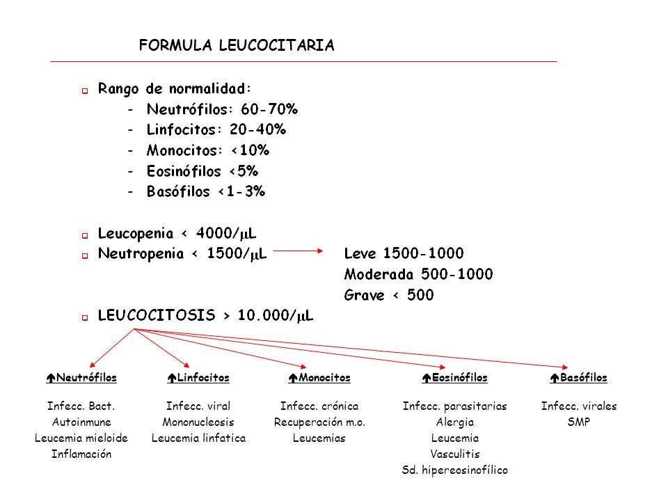FORMULA LEUCOCITARIA Neutrófilos Infecc. Bact. Autoinmune Leucemia mieloide Inflamación Linfocitos Infecc. viral Mononucleosis Leucemia linfatica Mono