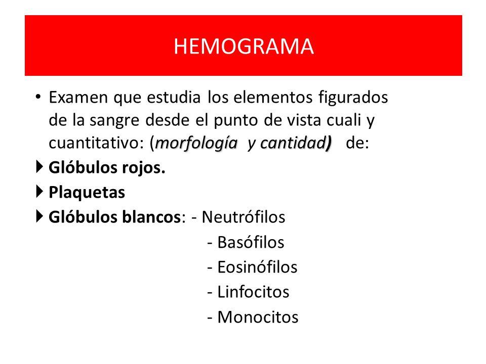 HEMOGRAMA morfología cantidad) Examen que estudia los elementos figurados de la sangre desde el punto de vista cuali y cuantitativo: (morfología y can