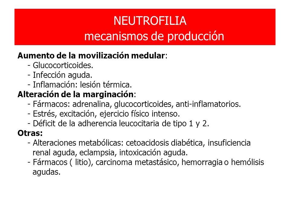 NEUTROFILIA mecanismos de producción Aumento de la movilización medular: - Glucocorticoides. - Infección aguda. - Inflamación: lesión térmica. Alterac