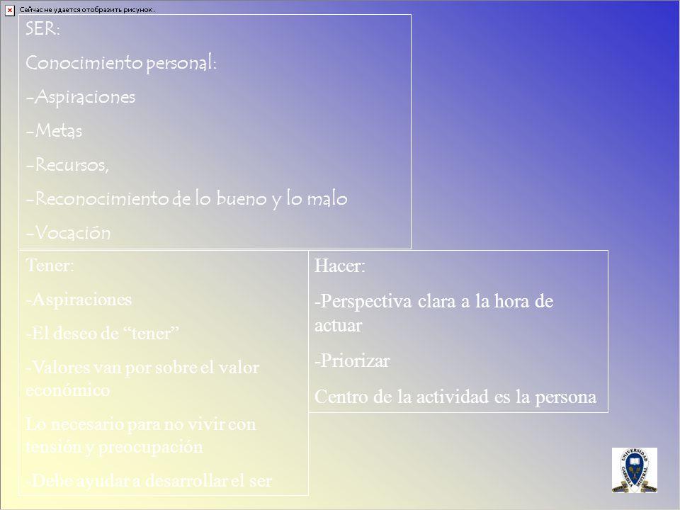 SER: Conocimiento personal: -Aspiraciones -Metas -Recursos, -Reconocimiento de lo bueno y lo malo -Vocación Tener: -Aspiraciones -El deseo de tener -V