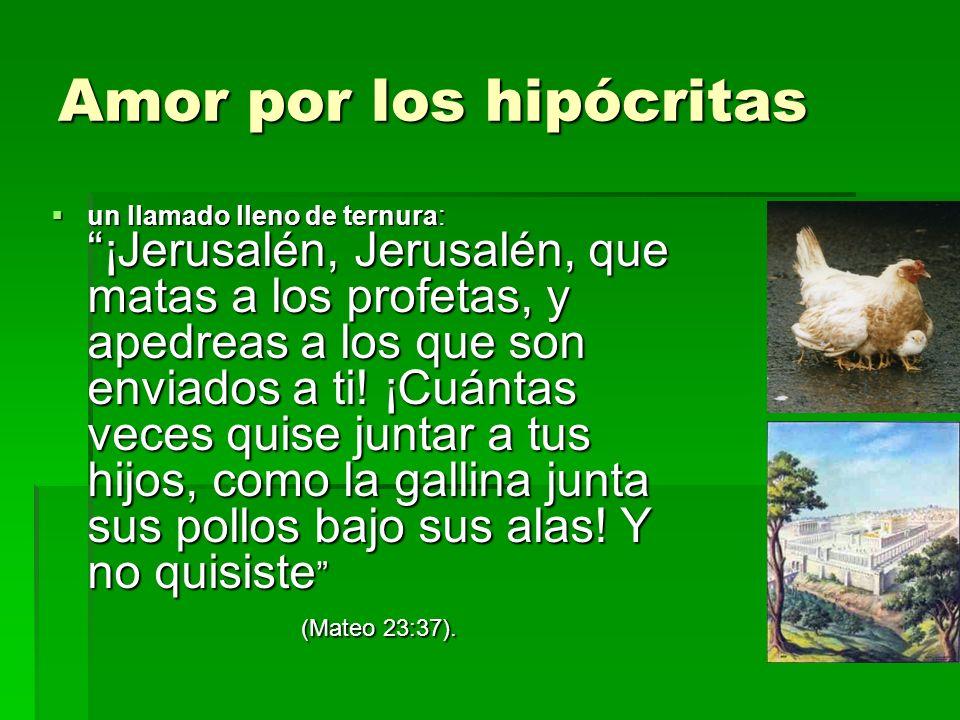 Amor por los hipócritas un llamado lleno de ternura: ¡Jerusalén, Jerusalén, que matas a los profetas, y apedreas a los que son enviados a ti! ¡Cuántas