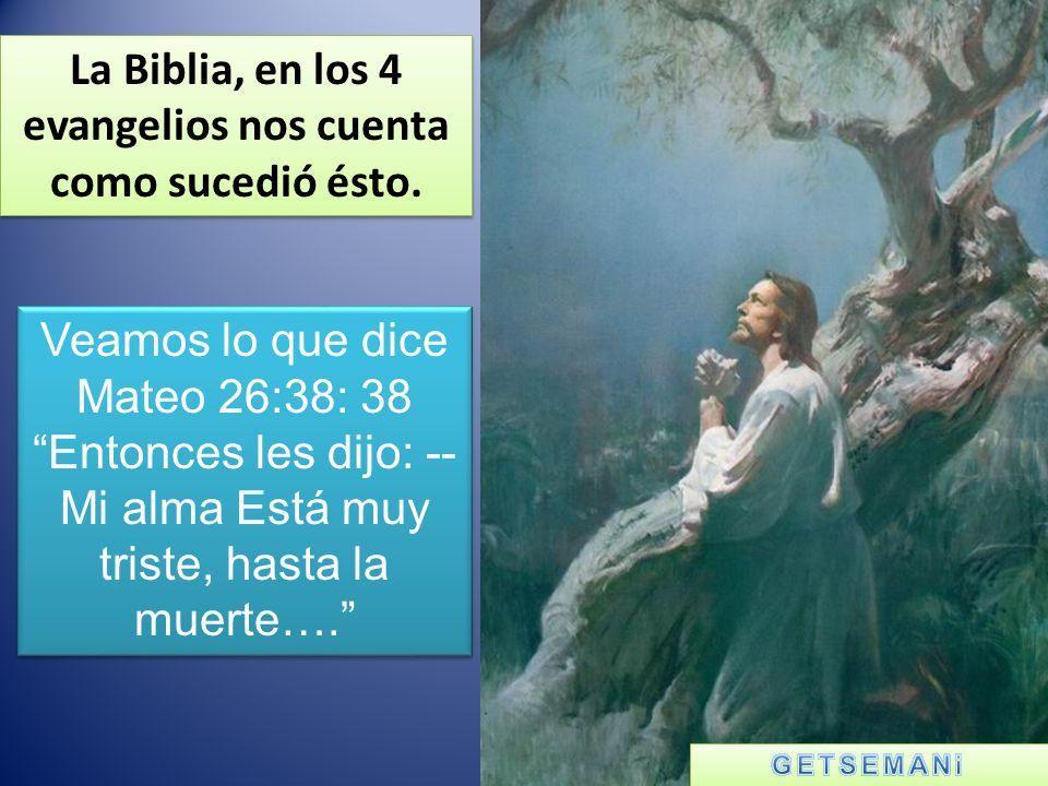 La Biblia, en los 4 evangelios nos cuenta como sucedió ésto.