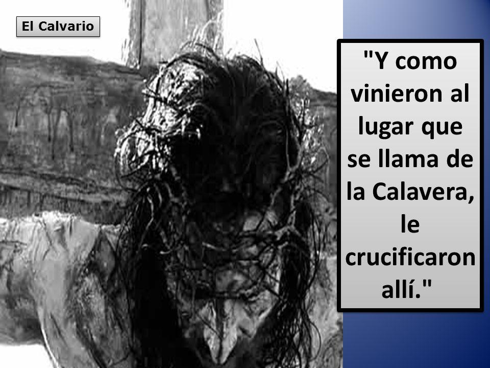 El Calvario Y como vinieron al lugar que se llama de la Calavera, le crucificaron allí.