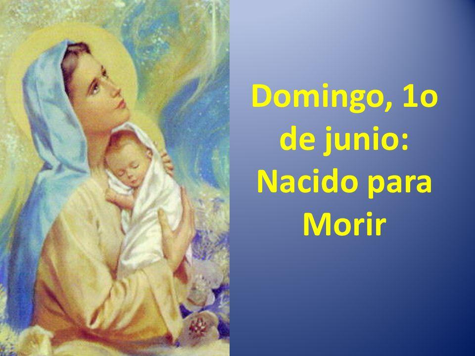 Domingo, 1o de junio: Nacido para Morir