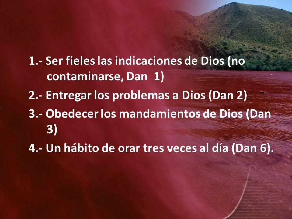 1.- Ser fieles las indicaciones de Dios (no contaminarse, Dan 1) 2.- Entregar los problemas a Dios (Dan 2) 3.- Obedecer los mandamientos de Dios (Dan