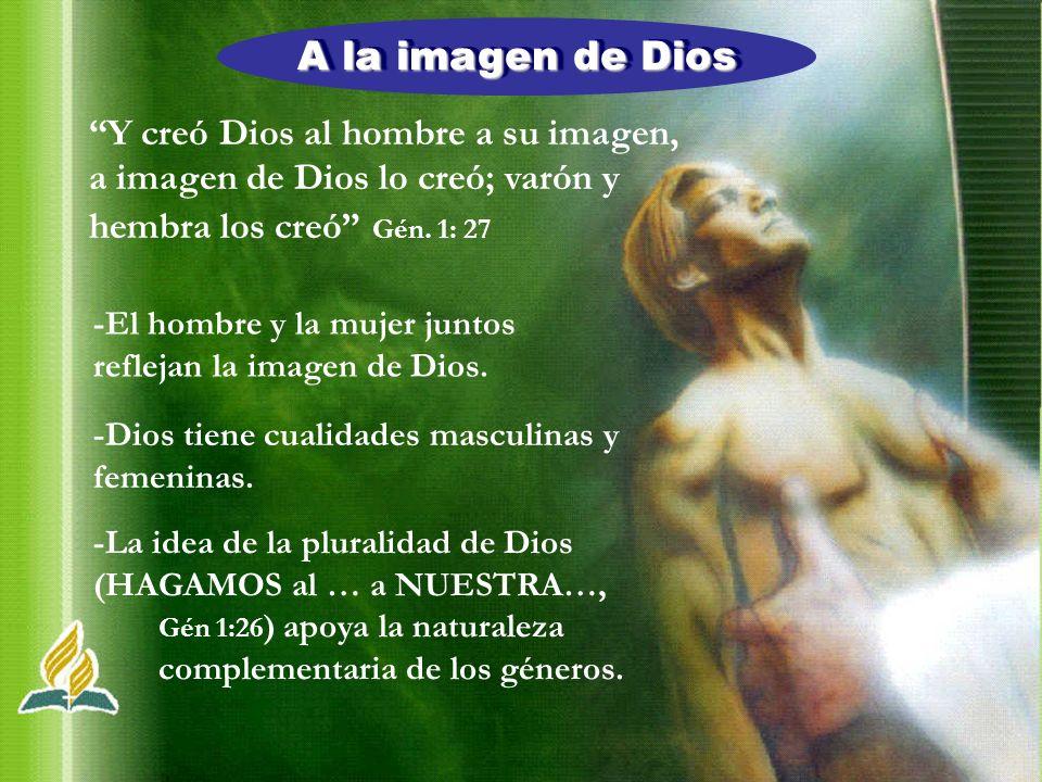 A la imagen de Dios Y creó Dios al hombre a su imagen, a imagen de Dios lo creó; varón y hembra los creó Gén. 1: 27 -El hombre y la mujer juntos refle
