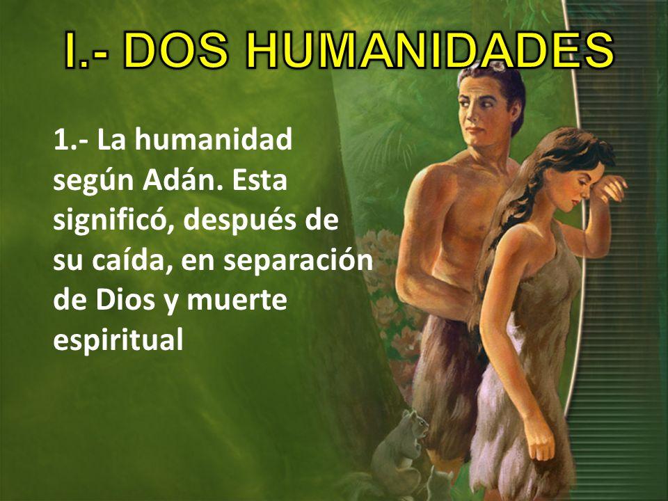 1- La humanidad según Adán Todos sus descendientes se encontraron en la misma situación que Adán Incapaces de vencer al pecado y la muerte.