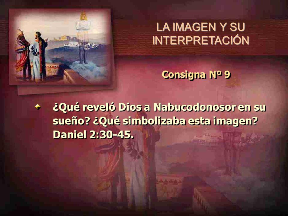 LA IMAGEN Y SU INTERPRETACIÓN Consigna Nº 9 ¿Qué reveló Dios a Nabucodonosor en su sueño? ¿Qué simbolizaba esta imagen? Daniel 2:30-45.
