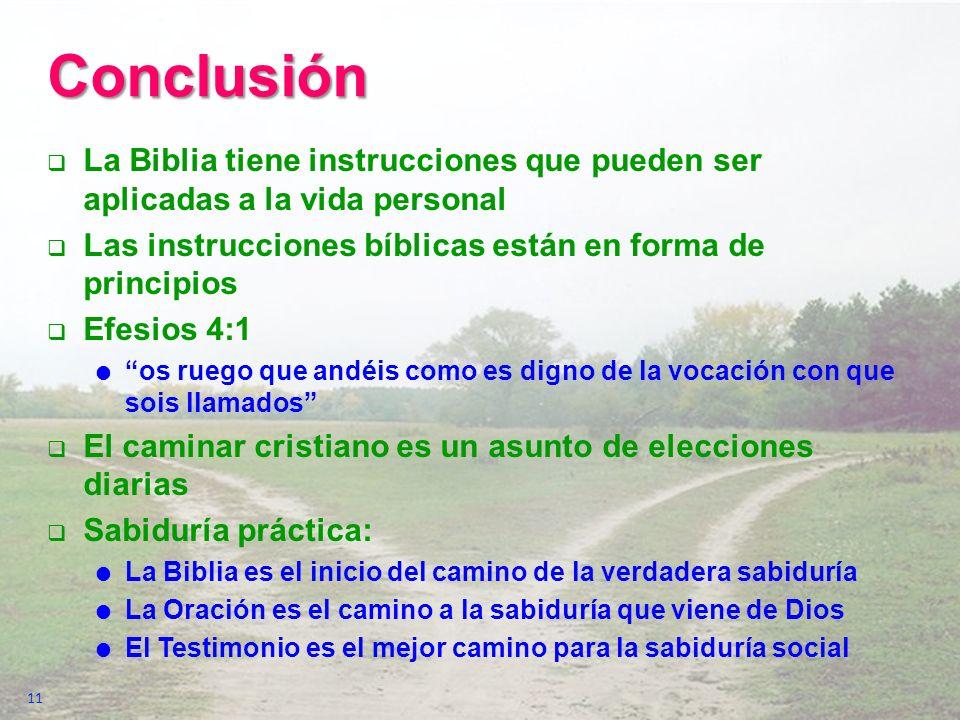Conclusión La Biblia tiene instrucciones que pueden ser aplicadas a la vida personal Las instrucciones bíblicas están en forma de principios Efesios 4