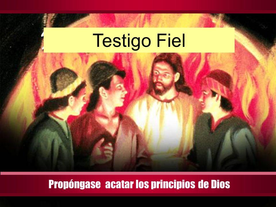 Perfect love casts out fear Propóngase acatar los principios de Dios Testigo Fiel