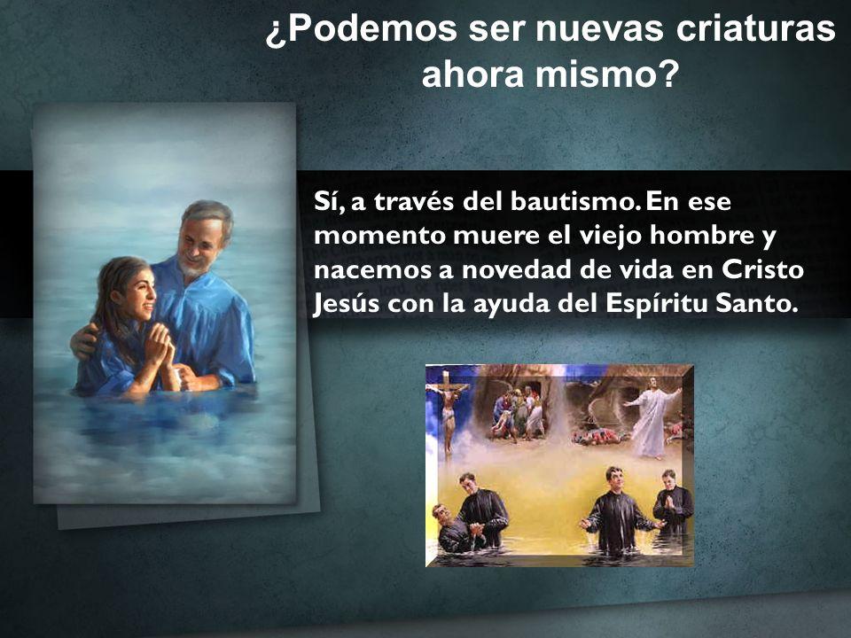 ¿Podemos ser nuevas criaturas ahora mismo? Sí, a través del bautismo. En ese momento muere el viejo hombre y nacemos a novedad de vida en Cristo Jesús