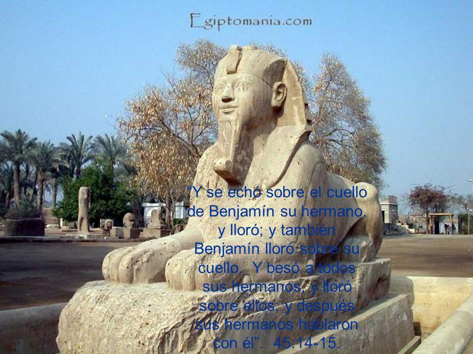 Y se echó sobre el cuello de Benjamín su hermano, y lloró; y también Benjamín lloró sobre su cuello. Y besó a todos sus hermanos, y lloró sobre ellos;