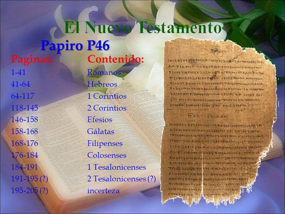 Paginas:Contenido: 1-41Romanos 41-64Hebreos 64-1171 Corintios 118-1452 Corintios 146-158Efesios 158-168Gálatas 168-176Filipenses 176-184Colosenses 184