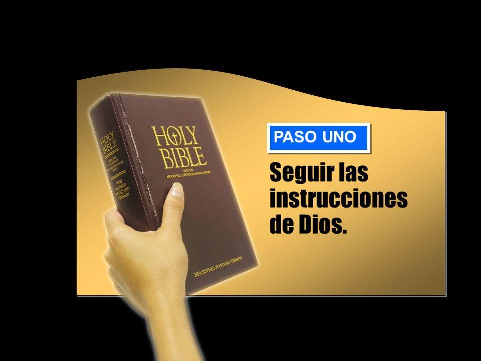 Instrucciones de Dios La pareja de Isaac tenía que ser de la familia de Abraham.