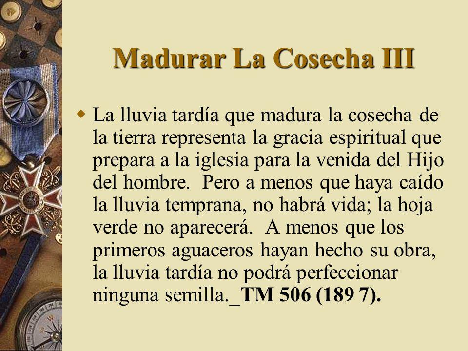 Madurar La Cosecha III La lluvia tardía que madura la cosecha de la tierra representa la gracia espiritual que prepara a la iglesia para la venida del