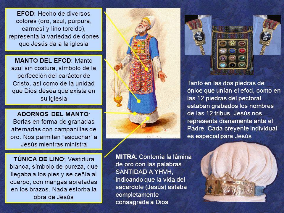 EFOD: Hecho de diversos colores (oro, azul, púrpura, carmesí y lino torcido), representa la variedad de dones que Jesús da a la iglesia MANTO DEL EFOD: Manto azul sin costura, símbolo de la perfección del carácter de Cristo, así como de la unidad que Dios desea que exista en su iglesia TÚNICA DE LINO: Vestidura blanca, símbolo de pureza, que llegaba a los pies y se ceñía al cuerpo, con mangas apretadas en los brazos.