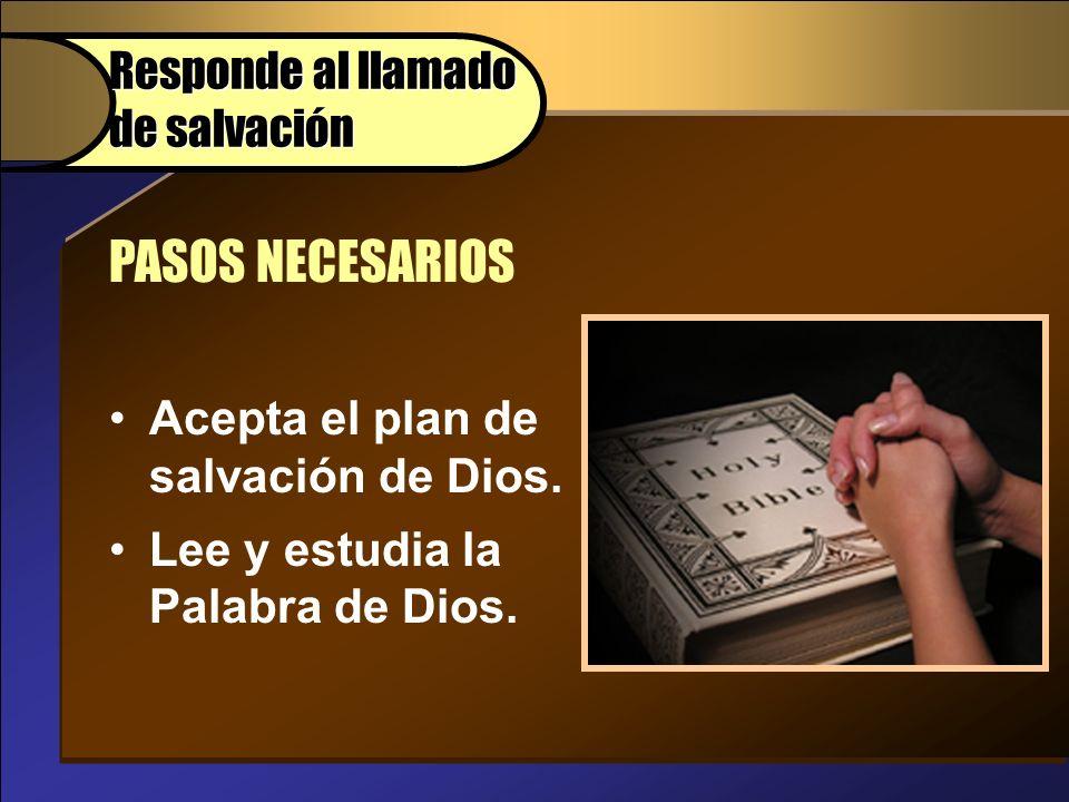 Acepta el plan de salvación de Dios. Lee y estudia la Palabra de Dios. PASOS NECESARIOS Responde al llamado de salvación