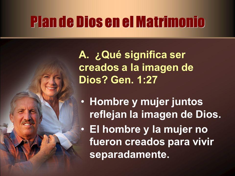 Plan de Dios en el Matrimonio Hombre y mujer juntos reflejan la imagen de Dios. El hombre y la mujer no fueron creados para vivir separadamente. A. ¿Q