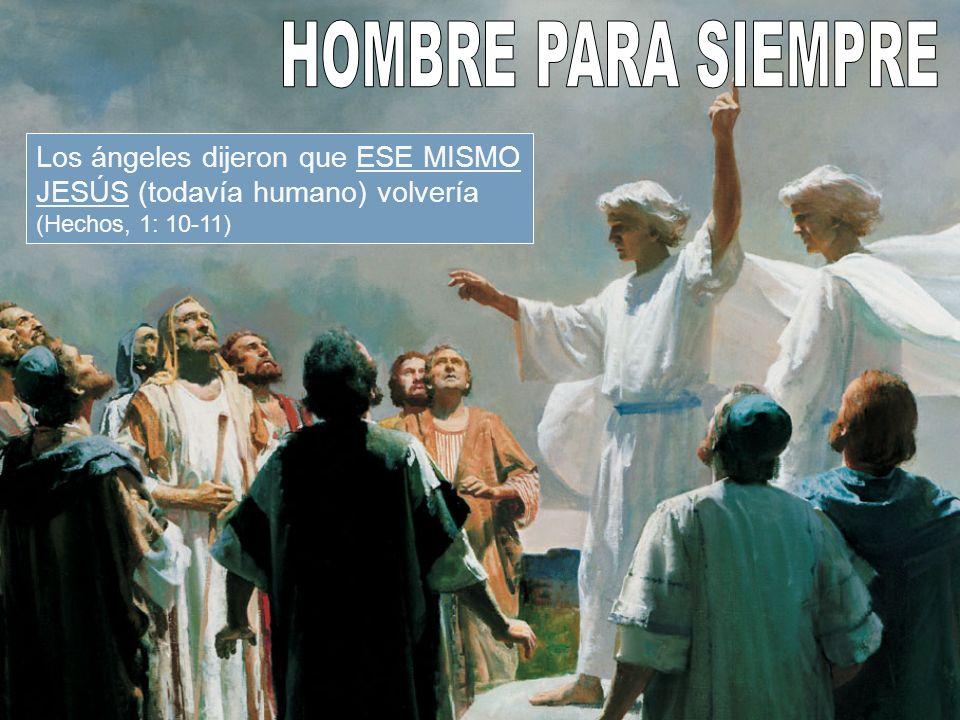 Pablo dice que nuestro mediador actual (en el cielo) es Jesucristo HOMBRE (1ª de Timoteo, 2: 5) HOMBRE
