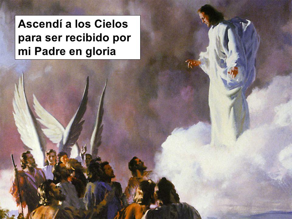 Ascendí a los Cielos para ser recibido por mi Padre en gloria
