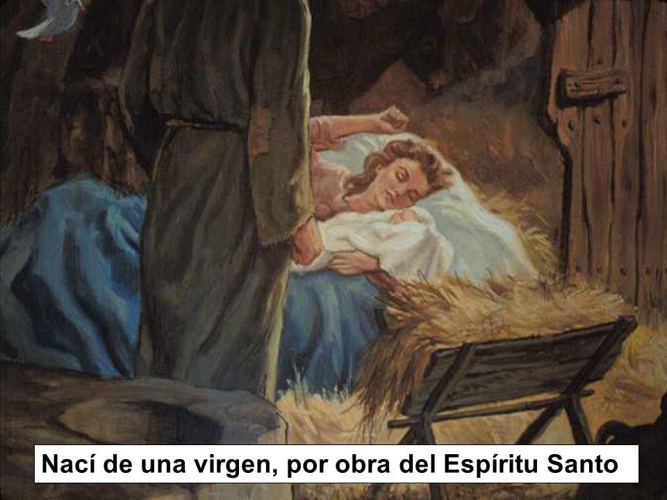 Nací de una virgen, por obra del Espíritu Santo