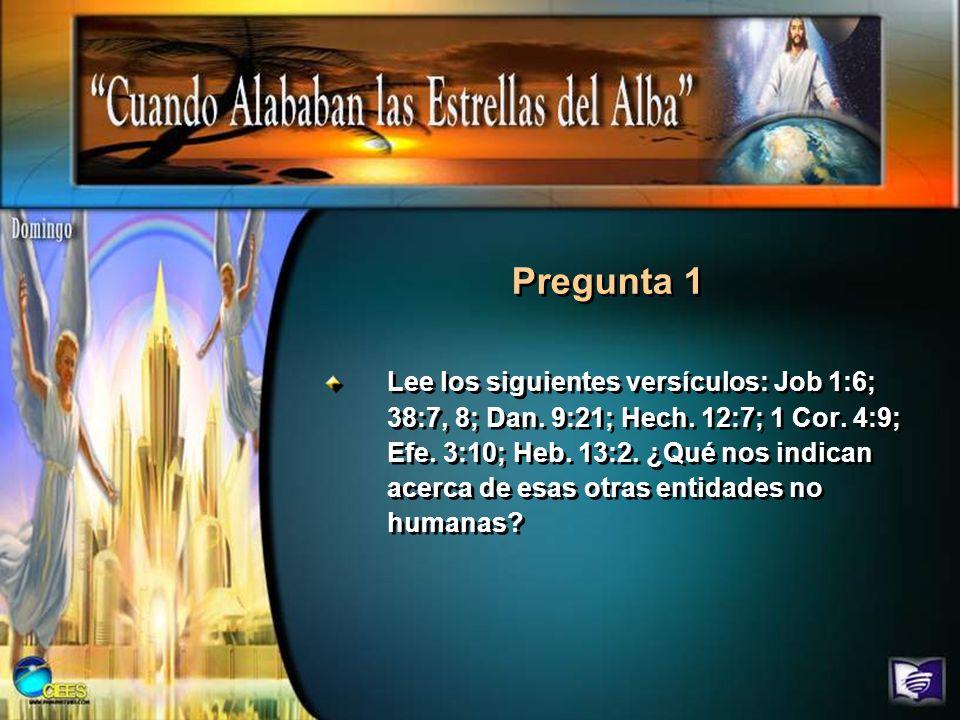 Lee los siguientes versículos: Job 1:6; 38:7, 8; Dan. 9:21; Hech. 12:7; 1 Cor. 4:9; Efe. 3:10; Heb. 13:2. ¿Qué nos indican acerca de esas otras entida