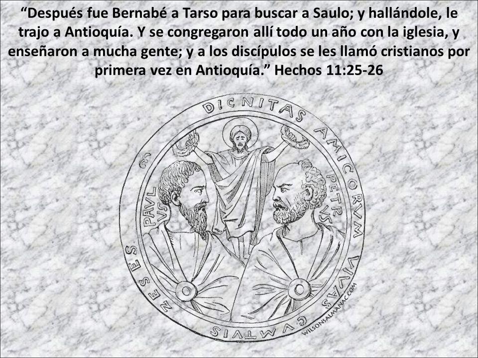 Después fue Bernabé a Tarso para buscar a Saulo; y hallándole, le trajo a Antioquía. Y se congregaron allí todo un año con la iglesia, y enseñaron a m