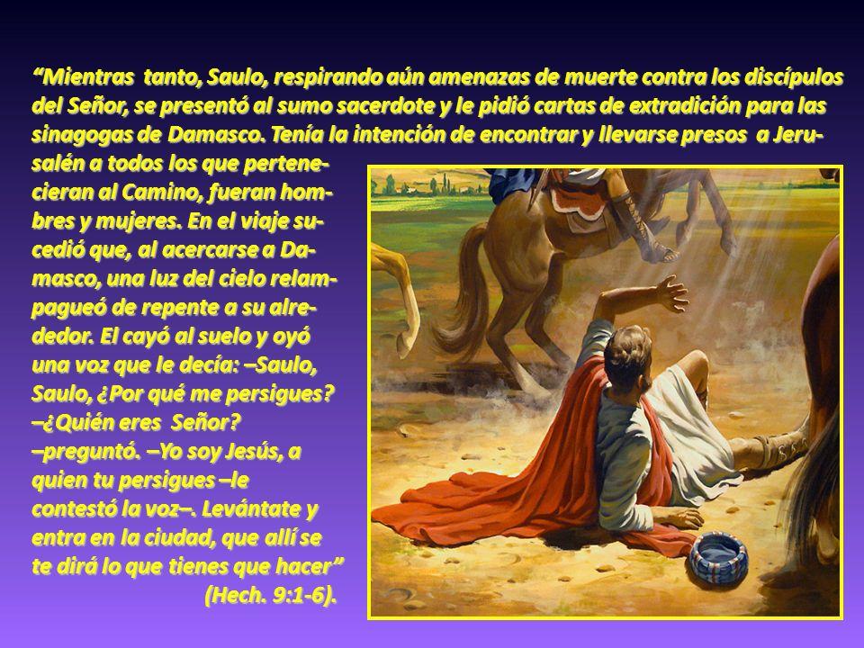 Mientras tanto, Saulo, respirando aún amenazas de muerte contra los discípulos del Señor, se presentó al sumo sacerdote y le pidió cartas de extradici